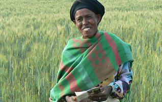 Women-Led Food Security and Nutrition  Image